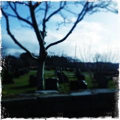 (crystalaria) Tags: graveyard norway iphone haugesund hipstamatic