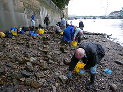 The FROG team hard at work cleaning (Thames Discovery Programme) Tags: london archaeology thames river community housesofparliament thamesdiscoveryprogramme fwm06