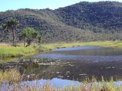 Wetlands near Townsville airport for bird watching etc.