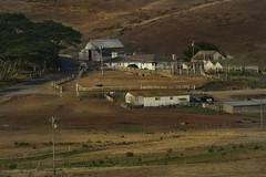 An American Farm (costa.federico) Tags: california ranch usa canon point landscape cow cowboy cows farm 7d reyes fattoria