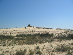 Dunas del parque natural de Doana, Huelva (A. Montero C.) Tags: andaluca sand dune arena dunas vegetacin geomorphology doana parquenacional naturallandscape pinuspinea geomorfologa paisajenatural espacionaturalprotegido proteccinambiental naturalprotectedarea geografafsica pshysicalgeography