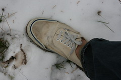IMG_6584 (sockless_ca) Tags: snow socks shoes no sweaty barefoot vans without smelly stinky authentic sockless insoles footbeds