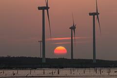 (digital_trance) Tags: sunset sea bird 20d nature windmill sunrise canon ship taiwan sigma  seafood oyster  lanscape bif        ocea    70d   40d    canon40d 5dmarkii 5d2 5dii canon5dmarkii eos5dmarkii canon5d2 canon5dmarkiii 5d3 canon70d 5diii vision:text=0591 vision:sunset=0817 vision:outdoor=0945 vision:sky=0691