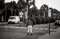 skating (Colin Robison) Tags: street trees blackandwhite bw white black streets tree sc palms candid south battery palm charleston carolina rollerblading rollerskating palmetto chs