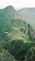 Machu Picchu, viewed from Huayna Picchu mountain, Peru (Miche & Jon Rousell) Tags: mountains peru southamerica ruins cusco llama machupicchu urubambariver incas