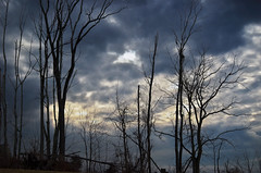 A calm before the storm... (John P Tomai) Tags: trees sky storm clouds dark landscape wintersky stormclouds winterstorm jpt145