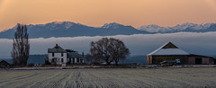 Ebey's Landing (NW Vagabond) Tags: morning mountains dawn farm whidbeyisland olympic 2014 ebeyslanding ebeysprairie