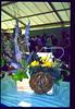 """Pandora's Box"" by Jane Whitby (aciamax) Tags: sweet nursery ""flower art"" ""rose gardens"" box"" ""dancing ""secret display"" dreams"" end"" ""will shadows"" ""floral arranging"" ""miniatures faries"" ""illusions"" ""rainbow's ""mirage"" ""pandora""s wisp"""