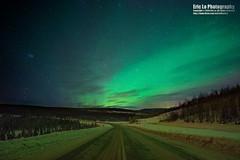 aurora highway (Eric 5D Mark III) Tags: winter sky usa cloud snow tree green alaska night canon landscape photography lights star unitedstates sony wideangle aurora northern fairbanks borealis tiltshift ericlo a7r elliotthighway tse17mmf4l tse17l metabones smartadapter eftonex ilce7r