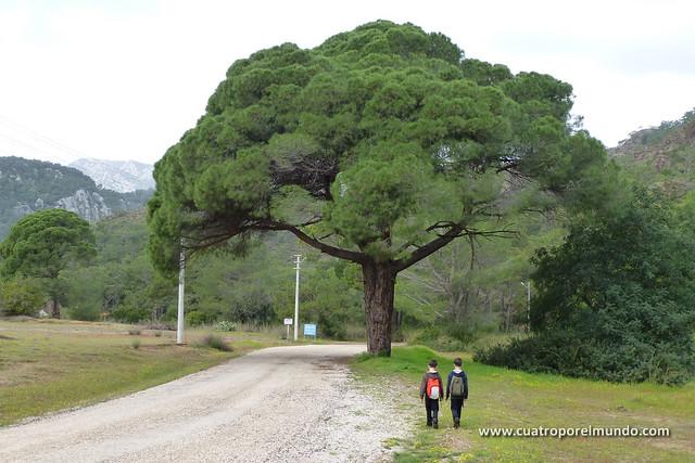 De ruta hacia las Chimaeras