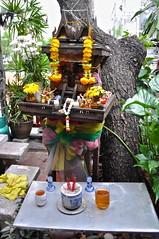 Streetside Altar (Victoria Lea B) Tags: tree thailand bangkok buddhist buddhism altar offfering