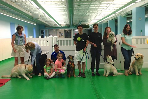"""Obedience 3, Session A, Spring 2015-Wed; Class photo-02 • <a style=""""font-size:0.8em;"""" href=""""http://www.flickr.com/photos/65918608@N08/19455873746/"""" target=""""_blank"""">View on Flickr</a>"""