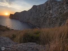 Formentor (David Maim) Tags: olympus mallorca omd formentor 10mm em10 samyang