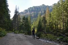 DSC_8025 (darek...1970) Tags: tatry tatras góry mountains dolina kościeliska