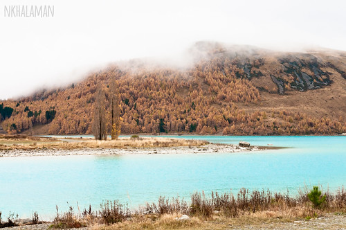 Turquoise Tekapo. Even in a foggy day.