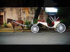 (geckobob) Tags: road horse brown waiting philippines wheels manila intramuros kalesa worldtrekker geckobob bobbygalvez
