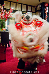 IMG_9802 (libertineeats) Tags: chinese melbourne mornington diggers liondance