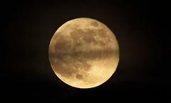 Full moon (Crystal_rivera) Tags: uploaded:by=flickrmobile flickriosapp:filter=nofilter