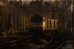 1021 - 655_266 + CARRI PIETRISCO A PISA  26_2_2010 FULL HD (SPECIALE CAIMANI XMPR) (Frank Andiver TRAIN IN TUSCANY) Tags: italy train canon frank photo italia photos rail trains tuscany rails locomotive toscana treno fs trenitalia treni 655 ferrovie binario caimano fullhd e655 andiver frankandiver trainintuscany