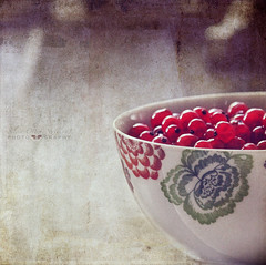 sweet and sour (silviaON) Tags: fruit august bowl ie textured redcurrant ribes 2013 contemporaryartsociety memoriesbook bsactions magicunicornverybest kimklassentextures stilllifephotoart isabellafranceaction