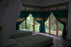 Room in the Eco Lodge (Bukit Lawang)