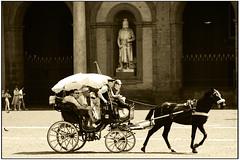 Carrozzella (gennaromignolo) Tags: napoli cavallo piazzadelplebiscito carrozzella