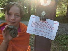 Lucy with the camp warning sign and my collectable rock (spelio) Tags: trip travel usa holiday rock warning montana mt bears tags rv aug 2013