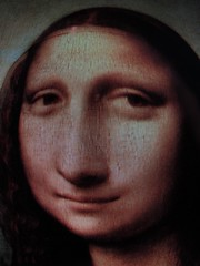 Mona Lisa Fisheye Series