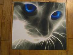 Cat's Eye (Kallid00) Tags: blue eye cat bead hama perler beadsprite