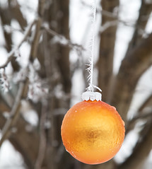 Hanging from Hoar (giantmike) Tags: winter orange cold tree ice glass frozen hoarfrost decoration ornament sphere hanging canonef24105mmf4lis