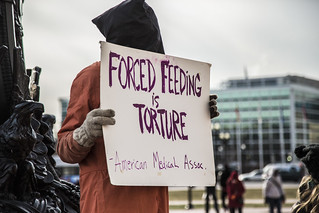 Forced Feeding is Torture