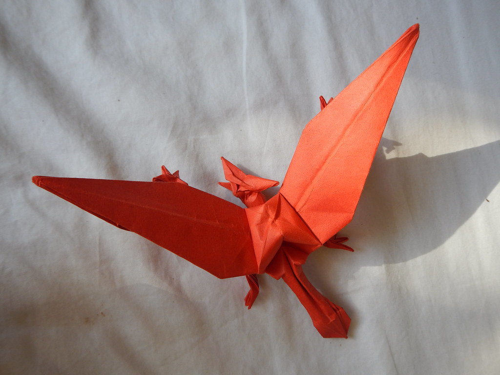 The World's newest photos of origami and pterodactyl ... - photo#11