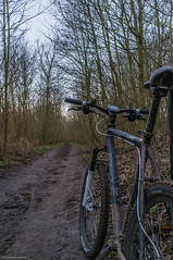 Day 6 (Wouter de Bruijn) Tags: bike bicycle forest sand mud path mountainbike mtb 365