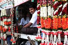 Kumar (_Spoutnik) Tags: india flower fleurs bombay mumbai flowermarket inde matunga matungawest