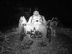 """The WooFPAK Says """"Let's GO WooFDriver!!"""""""