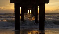 st. johns county pier at dawn (William Miller 21) Tags: ocean beach nature water sunrise pier florida wave staugustine