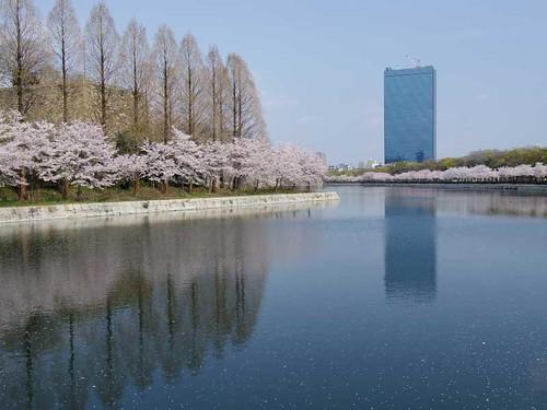 大阪城公園内
