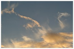 Sunset shapes (Zelda Wynn) Tags: sunset sky weather clouds wind shapes auckland cloudscape cirrus troposphere newlynn zeldawynnphotography