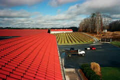 Roof Line, Childress Vineyards, Lexington, NC, 2014 (Tom Powell) Tags: film lines zeiss lexington patterns northcarolina echos 2014 contaxg2 colornegative childressvineyards davidsoncounty kodakektar100 28mmf28biogon