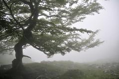 Buscando a Mari - Anboto (enekotas) Tags: mountain landscape paisaje montaña