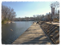 Lake Anne on a Spring-Like February Day (procktheboat) Tags: lakeanne restonvirginia restonva restonpassages