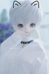 Meow~ (ฅ>ω<*ฅ) (leoooona08) Tags: bjd doll dollfie balljointeddoll sadol love60 body