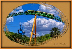 Busch Gardens - Tampa, Fl. (Wilder PhotoArt) Tags: vacation canon tampa tampabay florida buschgardens americaamerica