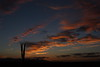 Sunset (yerpop) Tags: sunset cactus clouds skytheme skycloudssun perfectsunrisessunsetsandskys sunsetsandsunrisesgold cloudsstormssunsetssunrises