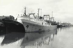 St. Andrews Dock - February 1968 (st_asaph) Tags: hull trawler sidewinder standrewsdock fishdock sterntrawler jmarr hulldocks lordline hulltrawler junella stjason h347 hallrussell h436 thomashambling