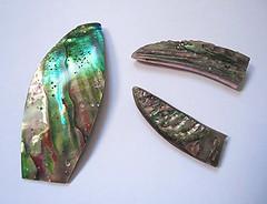 Abalone (MAURO CATEB) Tags: shell jewelry jewellery abalone concha jewels jewel jeweler joia mineralogy joias joalharia joalheria mineralogia joalheiro