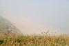 "Cornish Beach in the Fog <a style=""margin-left:10px; font-size:0.8em;"" href=""http://www.flickr.com/photos/11929105@N00/9491356220/"" target=""_blank"">@flickr</a>"