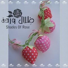 (Dhelal Warda) Tags: fruit strawberry kawaii