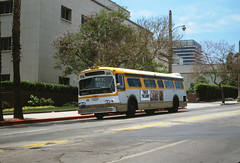 072 RTD 7137 On Temple  Near Hill Sts. 19800618 AKW (Metro Transportation Library and Archive) Tags: rtd scrtd southerncaliforniarapidtransitdistrict busexterior