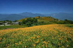2013-09-17 10.06.00 (pang yu liu) Tags: 2013 09 sep taiwan circular travel     day3  hualien clear day  scenery circle weather